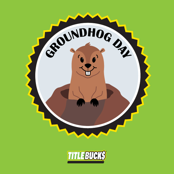 groundhog poking head out of burrow